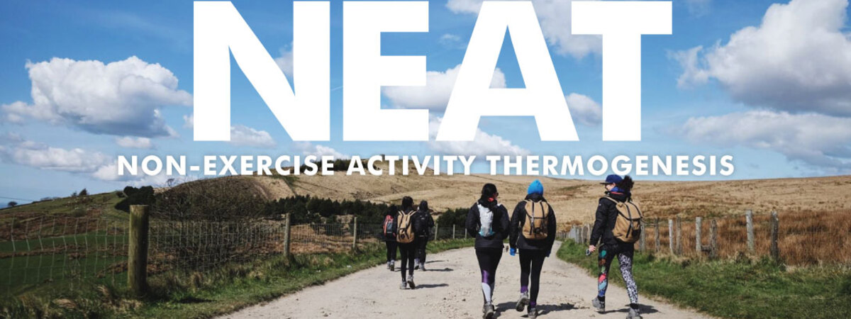 Improve your results with N.E.A.T
