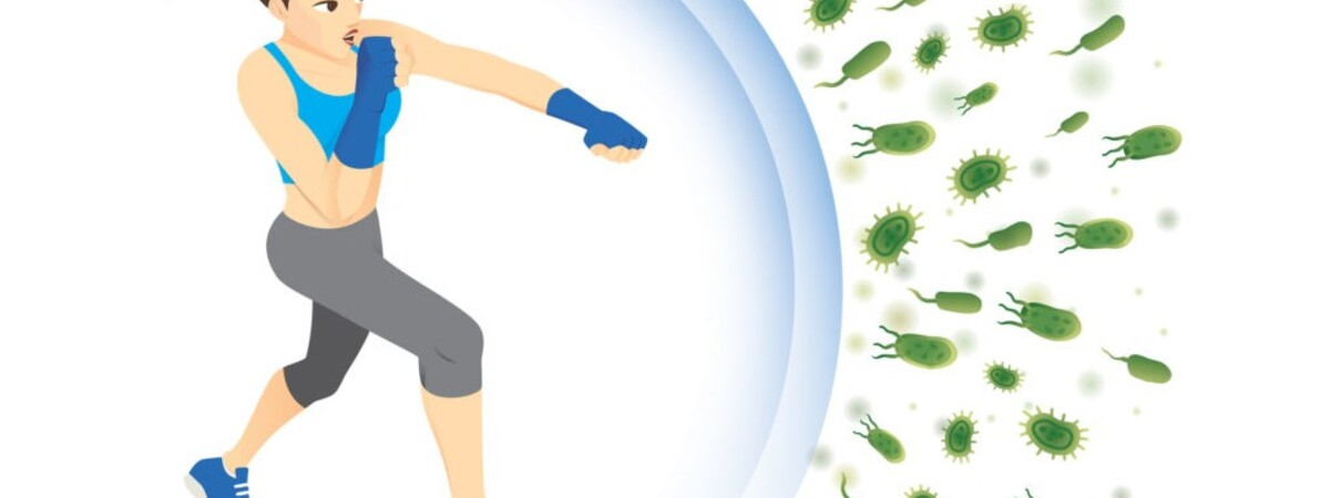 Nutrition, Physical Exercise & The Immune System